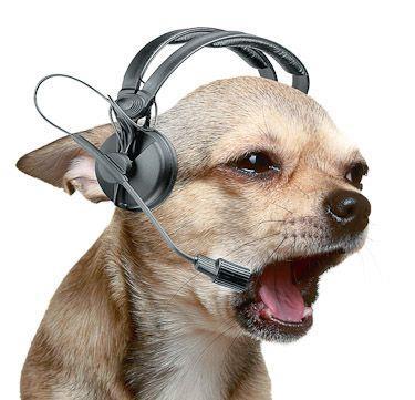 Рейдерский захват: наушники поглотили слух