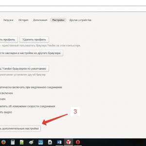 «Дополнительные параметры Яндекс браузера»
