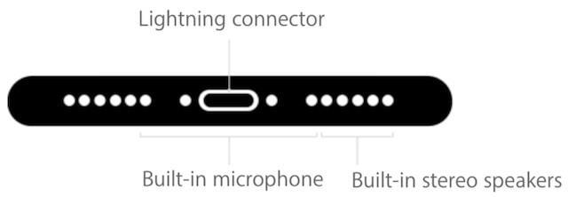 iPhone 7 динамик